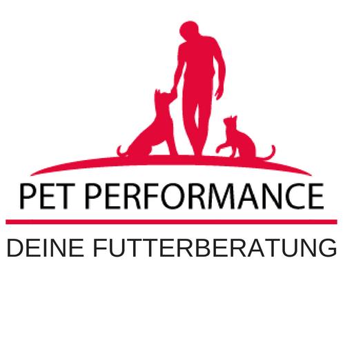 ANIFit Ernährungsberatung für Hunde und Katzen